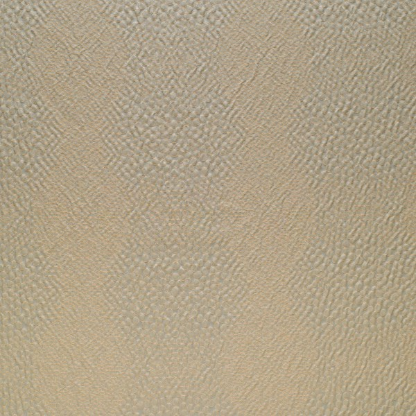 Shagreen_Sea_6006_17