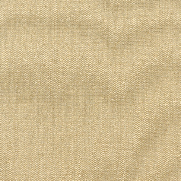 Vanessa_Honey_1006_02